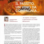 Articolo sul Passito vino da dessert