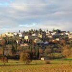 Consulenza apertura steack house a Lucignano Arezzo