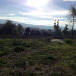 Consulenza per apertura Agriturismo in Castelchiaro Narni